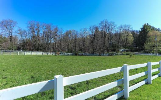 249 bedford banksville road horses