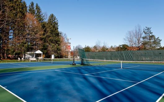 1 pond tennis